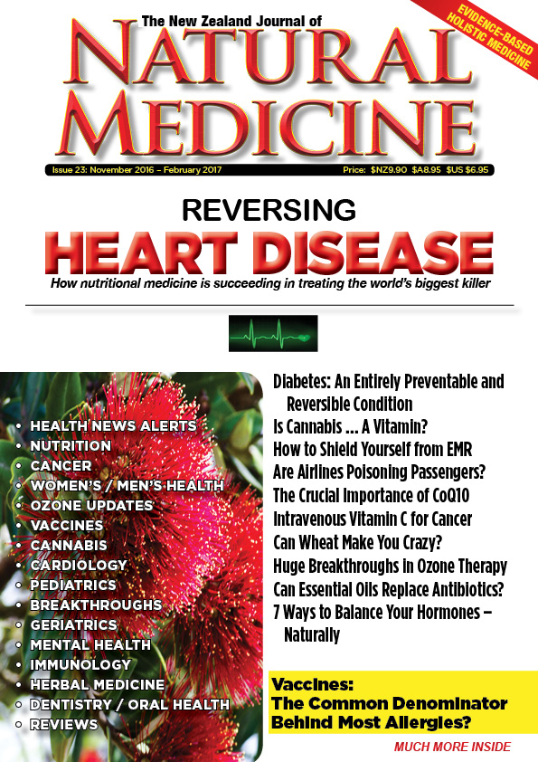 issue-23-of-the-nz-journal-of-natural-medicine-cover